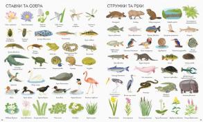 1000 назв природи. Фото 3