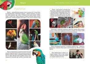 Велика книга про тварин . Фото 3