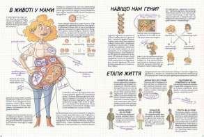 Тіло людини. Як це працює?. Фото 3