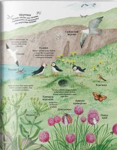 Велика ілюстрована книга про природу. Фото 3