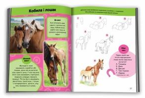 Вчимося малювати коней. Фото 2