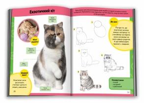 Вчимося малювати котів і кошенят. Фото 3