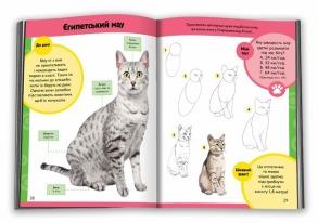 Вчимося малювати котів і кошенят. Фото 2