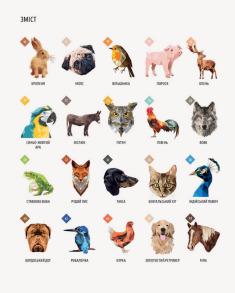 Зоометрія. Улюблені тварини. Фото 4