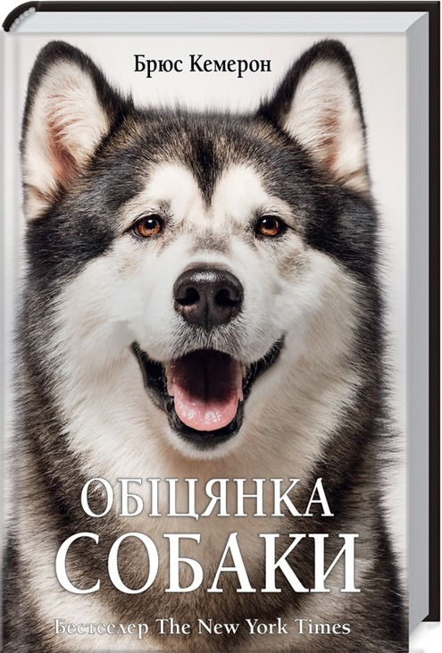 Обіцянка собаки