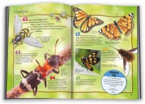 100 фактів про комах та інших безхребетних. Фото 2