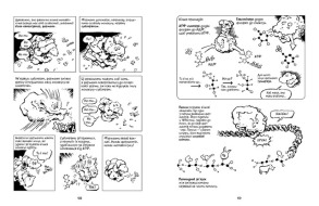 Наука в коміксах. Біологія. Фото 3
