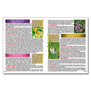 Повний атлас лікарських рослин. Фото 2