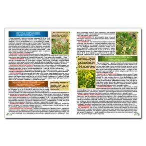 Повний атлас лікарських рослин. Фото 3